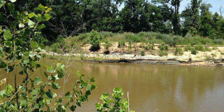 Polecat Creek Bank Stabilization, Polecat Creek, OKAC
